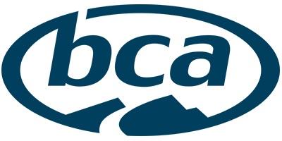 Sponsor - BCA